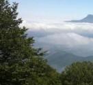 تور جنگل ابر - دامغان نوروز98