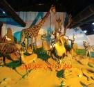 تور موزه های حیات وحش تهران